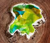 Groene glasfusing in hout. Glaskunst uit eigen atelier.
