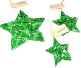 Green Star (L)_