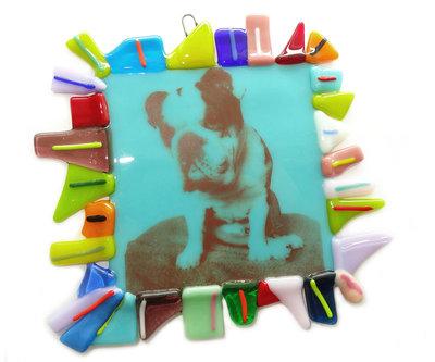Hanger foto in glas! Colourful Bulldog